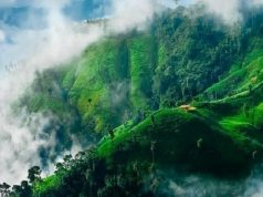 Natural beauty of winter in Bandarban