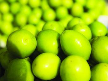 Health benefit of plum