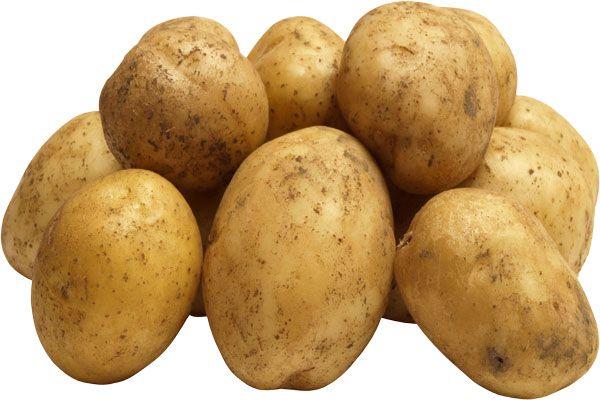 Potato-Health