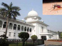 Why not compensate the victims of Chikungunya চিকুনগুনিয়ায় আক্রান্তদের ক্ষতিপূরণ