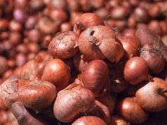 Increasing onion prices